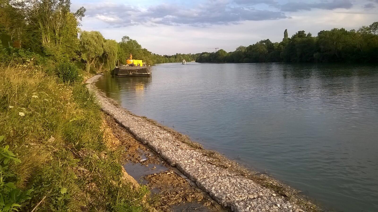 Protection des berges de Seine en matelas RENO à Boissise-la-Bert. (77)